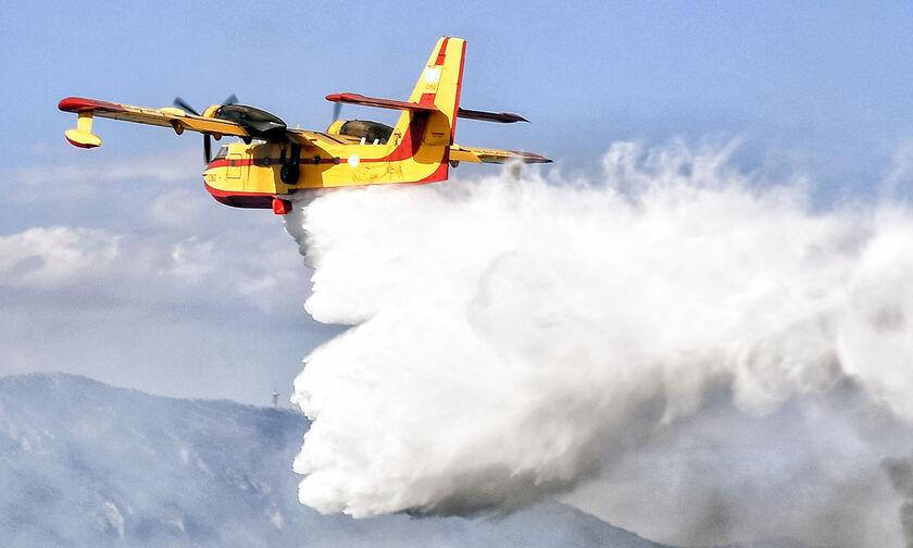 Δασική πυρκαγιά στην Αταλάντη