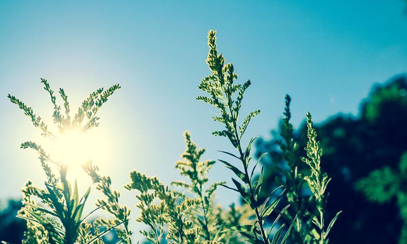 Καιρός: Καλοκαιρία σε όλη τη χώρα με μικρή άνοδο της θερμοκρασίας