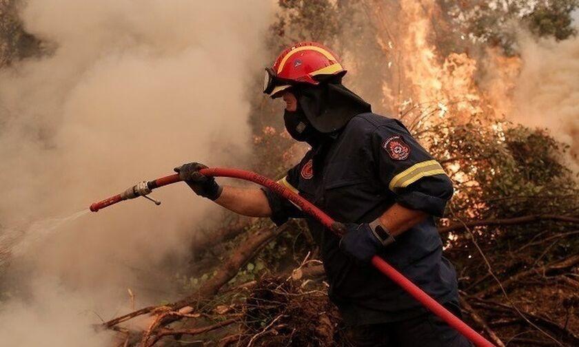 Πυρκαγιά σε περιοχή του Δήμου Παιονίας στο Κιλκίς