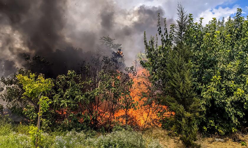 Πυρκαγιές σε Αργολίδα και Κοζάνη