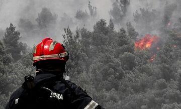 Φωτιά στη Λιαντίνα Λακωνίας